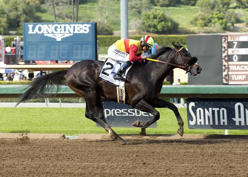 Danzing Candy and jockey Mike Smith win the Grade II, $400,000 San Felipe Stakes, Saturday, March 12, 2016 at Santa Anita Park, Arcadia CA. © BENOIT PHOTO