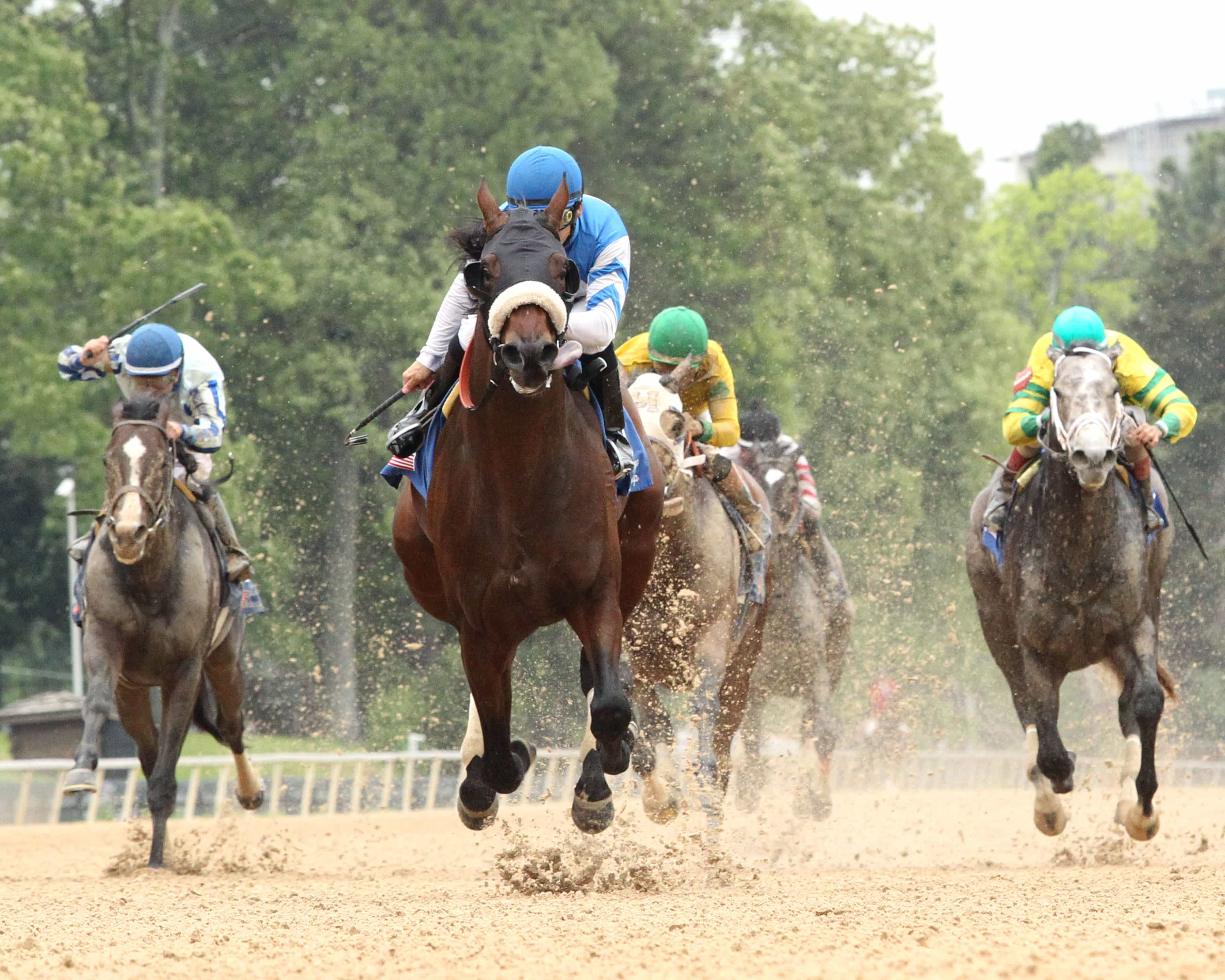Effinex Favorite For Saturday Nights G1 500000 Stephen Foster Beauty Barn Stick Series Package 5 Gr Coady Photography