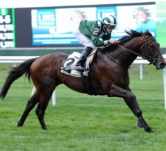 Green Mask Returns in $100,000 Elusive Quality at Belmont Park