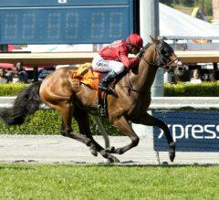 Guns Loaded Wins Grade 3, $100,000 San Simeon Stakes at Santa Anita Park