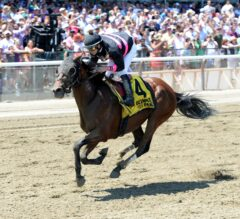 Kid Cruz Eyes First Graded Stakes Start Since 2014 Travers in Excelsior Saturday