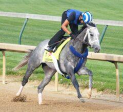 Mohaymen Fires Bullet; Mo Tom, Lani Work Toward Kentucky Derby 142
