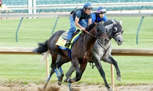 Mor Spirit - Morning Work - CD - 042616-Photo Credit: Churchill Downs/Coady Photography