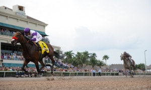 Nyquist wins the Florida Derby - Photo Credit: Coglianese Photos/Gulfstream Park