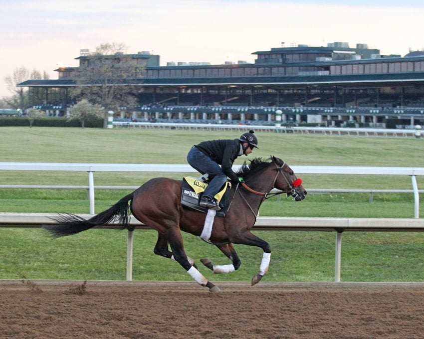 Nyquist works at Keeneland April 15 - Photo Credit: Keeneland Photo