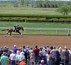 Nyquist Turns in Final Kentucky Derby Work on Keeneland's Closing Day