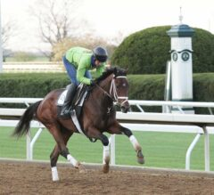 Mother Goose Preview: Rachel's Valentina Looks for Redemption