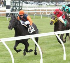 Shakhimat Leads All the Way to Win Opening-Day Transylvania