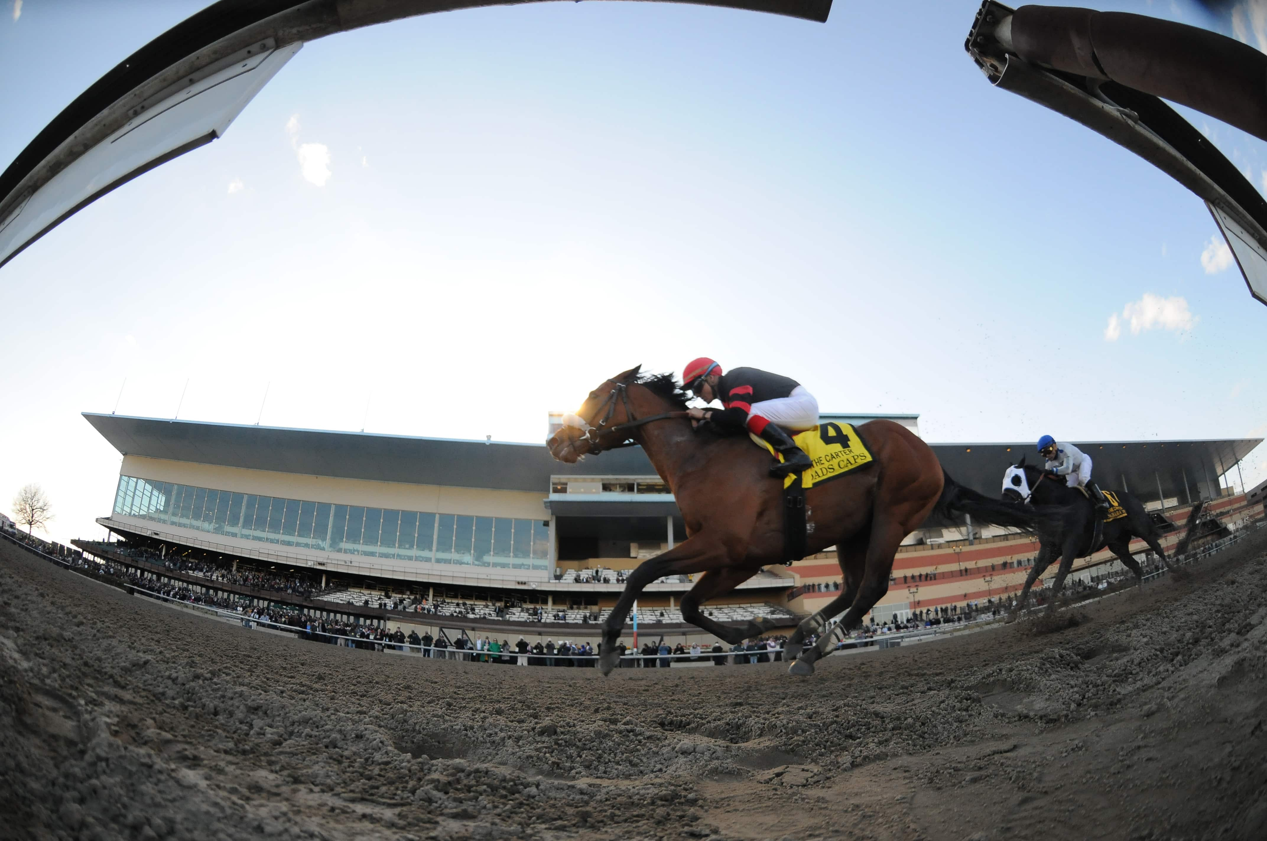 Dads Caps wins the Carter - Photo Credit: NYRA
