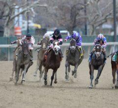 Chad Brown's Lewis Bay Tops G2 Gazelle Stakes, Eyes Kentucky Oaks