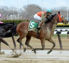 Jose Ortiz Wins Five, Irad Ortiz, Jr. Takes Two During Big A's Claiming Championships
