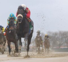 Sizzling Stakes Debut From Unified in G3 Bay Shore
