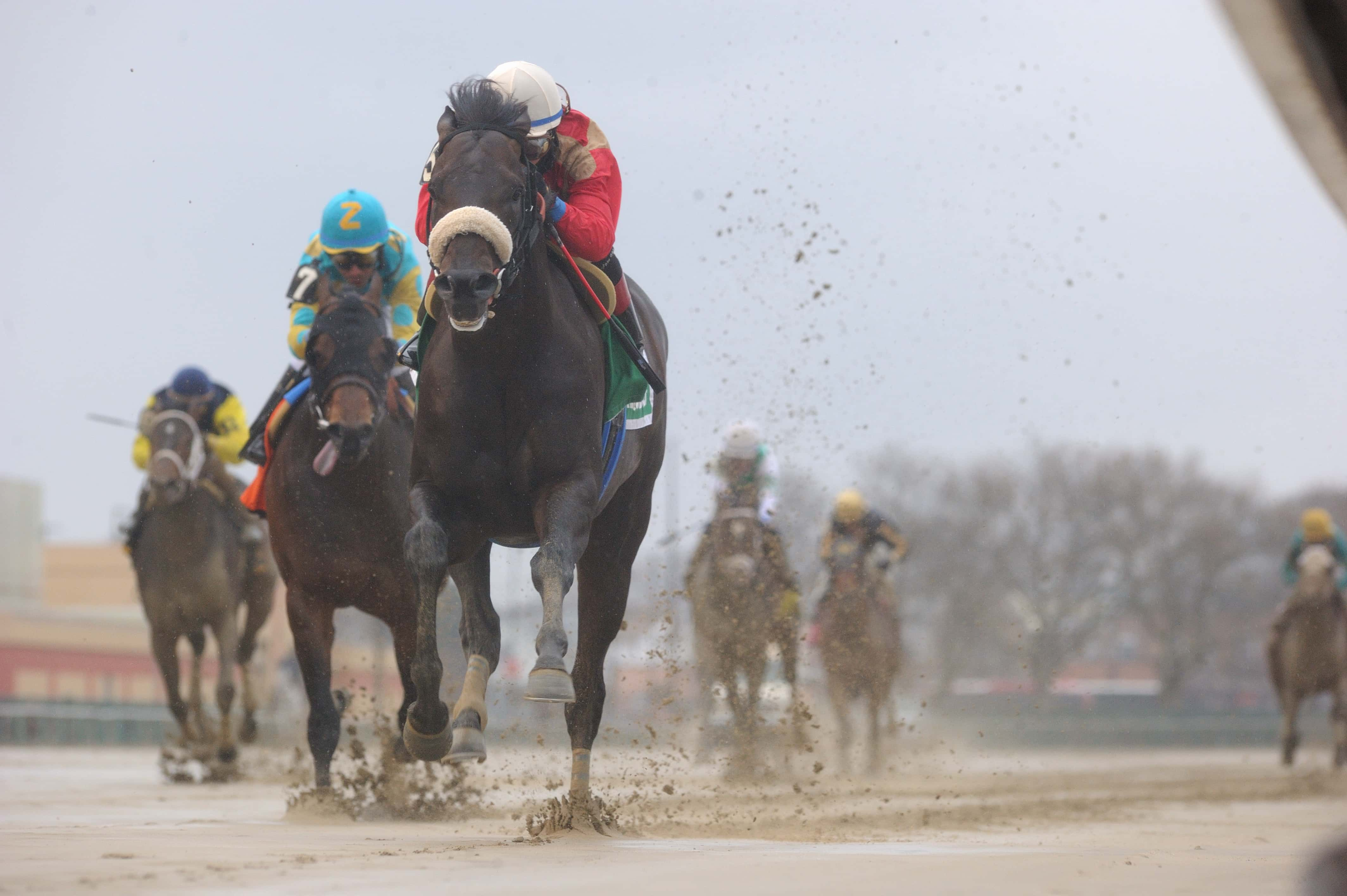 unified the bay shore - NYRA