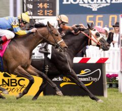 Ben's Cat Pounces Late in $100,000 Jim McKay Turf Sprint, Wins 32nd Career Race