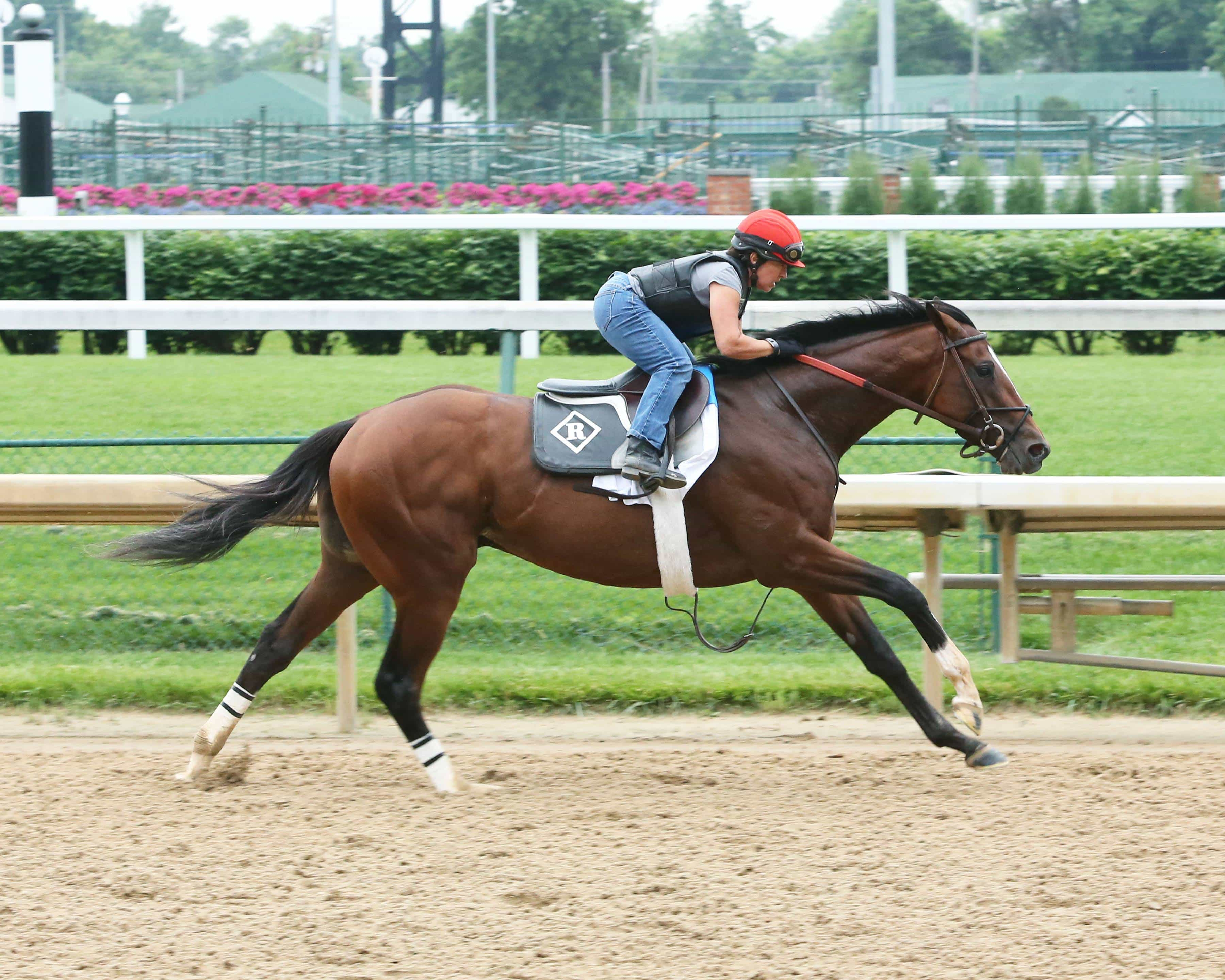 Brodys Cause - Morning - CD - 052816-Churchill Downs/Coady Photography