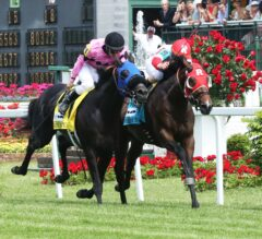 Belmont Derby Preview: Wide Open Betting Race Awaits