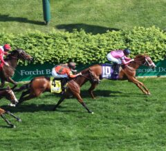Catch a Glimpse Looks to Run Further Than Ever in Saturday's G1 Belmont Oaks