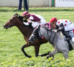 Divisidero Edges World Approval to Win G1 Woodford Reserve Turf Classic