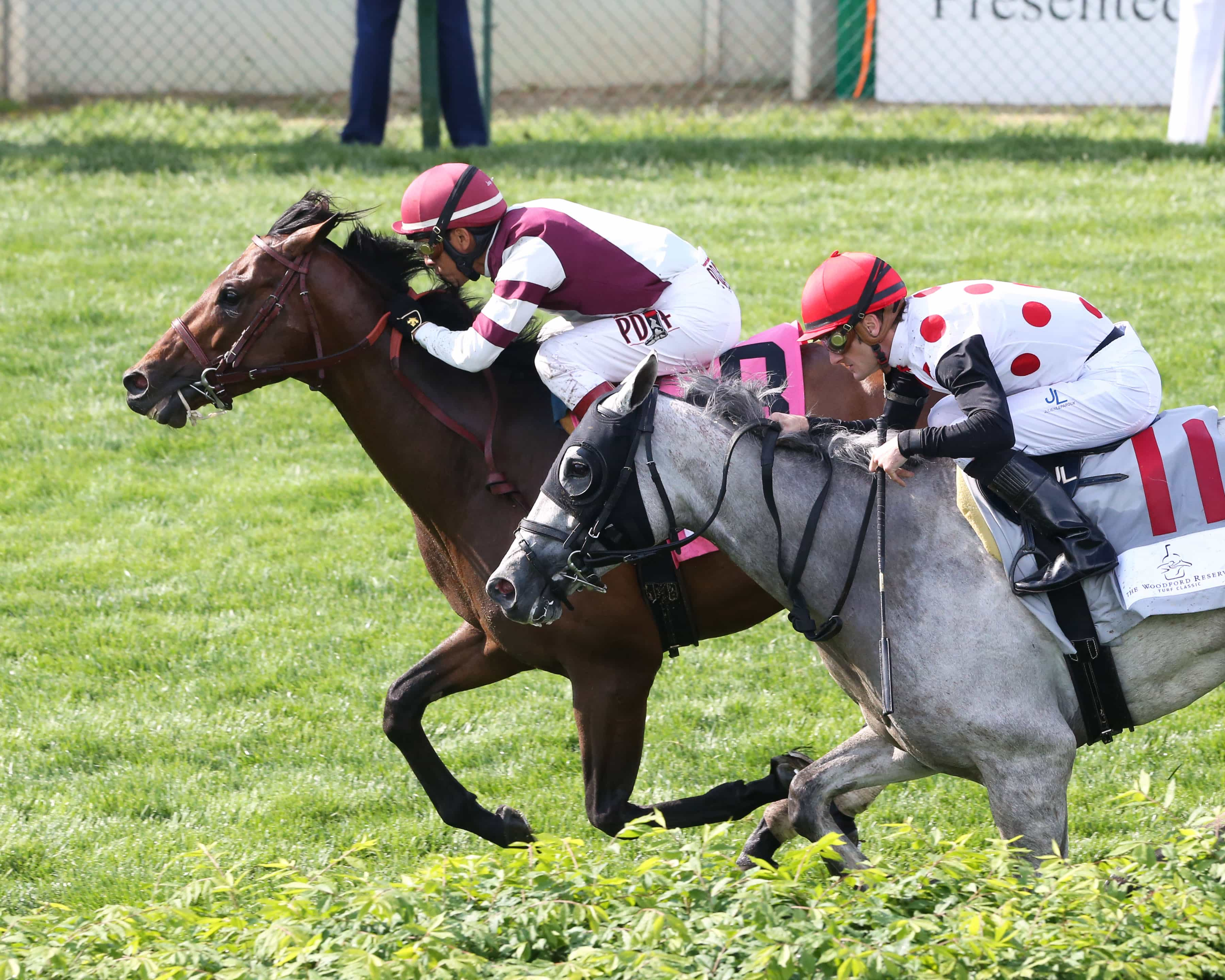 DIVISIDERO - The Woodford Reserve Turf Classic Gr I - 30th Running - 05-07-16 - R11 - CD - Coady Photography