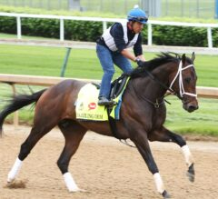 Churchill Downs Barn Notes: Dazzling Gem Breezes For Possible Preakness