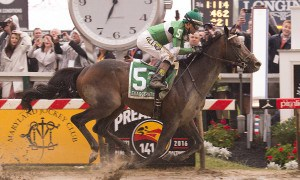 Exaggerator-01 Maryland Jockey Club