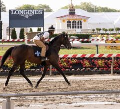 Exaggerator Returns to Track, Nyquist Out of Belmont Stakes