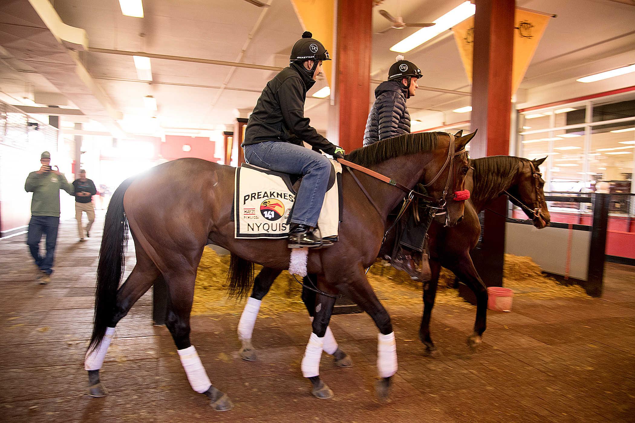 Nyquist - Maryland Jockey Club