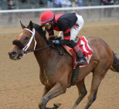Paulassilverlining Delivers in G3 Vagrancy; Lightstream Victorious in Soaring Softly