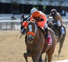 Castellano Gives Turco Bravo Perfect Ride to Win Flat Out