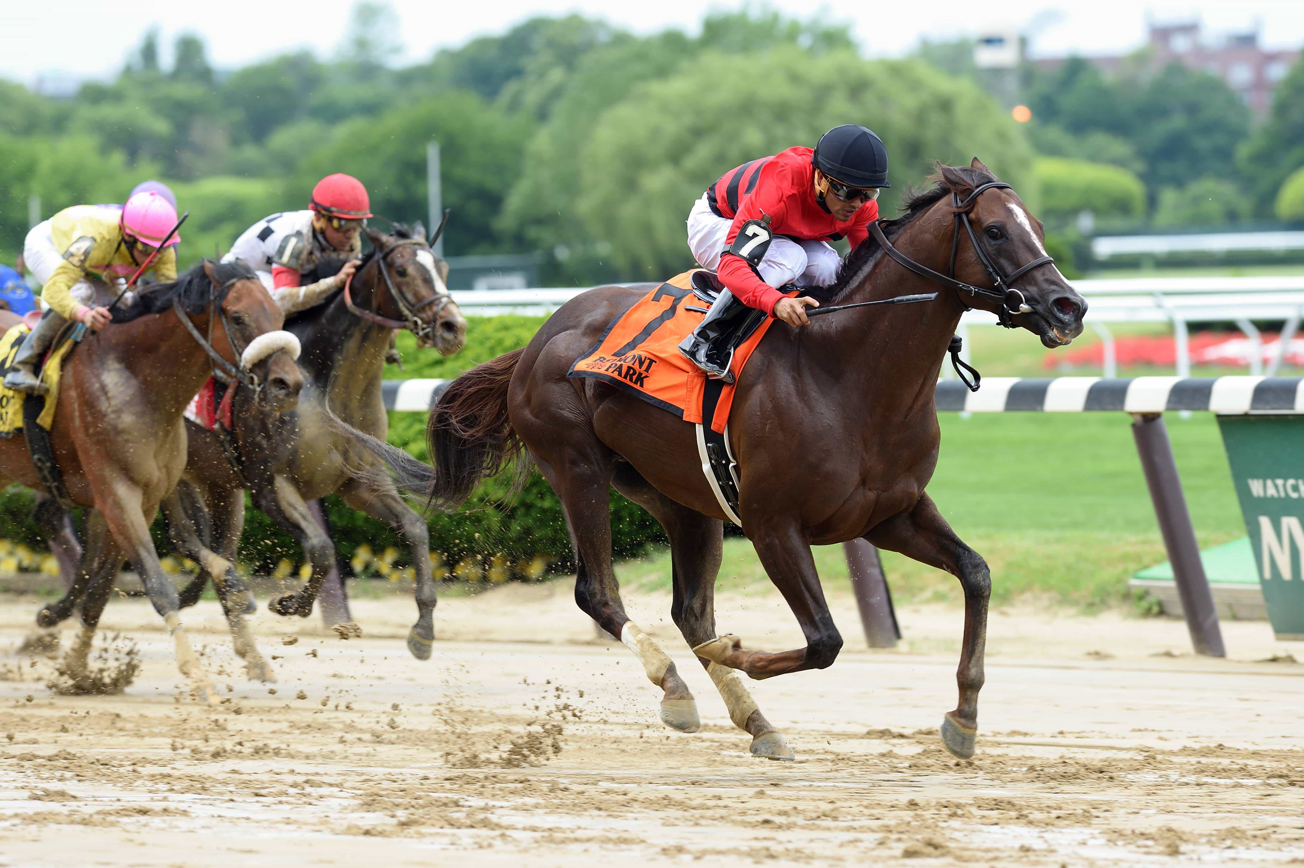 Weekend hideaway The Commentator 2016 - NYRA