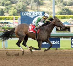 Wild Dude Rallies From off the Pace to Take G2, $200,000 Kona Gold Stakes