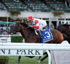 Kentucky Derby Undercard: Champion Big Blue Kitten Makes 2016 Debut in Woodford Reserve