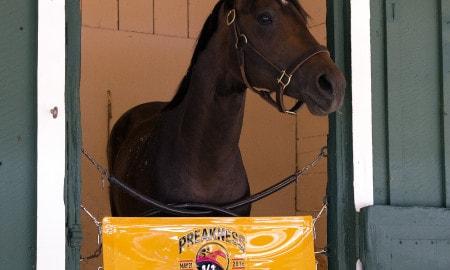 exaggerator - Maryland Jockey Club