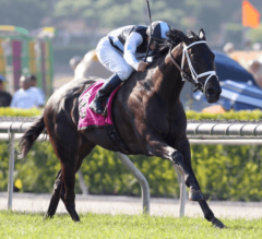 Illuminant Upsets Heavily Favored Wekeela to Win Grade 1, $300,000 Gamely Stakes