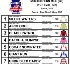 Catch a Glimpse Tackles the Boys in $500,000, G3 Penn Mile