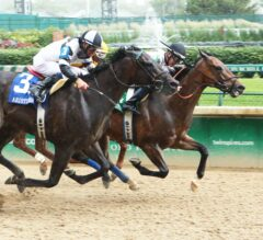 Alsvid All Heart in Grade 3, $100,000 Aristides, Beats Limousine Liberal by Head