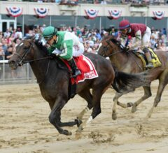 Bar of Gold, Wavell Avenue Lead G3 Bed O' Roses Field Saturday at Belmont Park