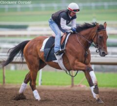 Clement Hirsch Preview: Beholder Preps for the Pacific Classic