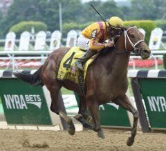 Cavorting Plays With Field in G1 Ogden Phipps