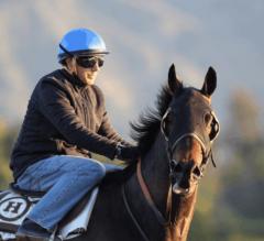 Santa Anita Stable Notes: Big 'Cap King Melatonin Fresh for Gold Cup