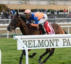 Brown Ready With Triumvirate for G2 New York Handicap