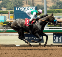 Del Mar Report #4: Champagne Room Breaks Maiden in Sorrento Stakes