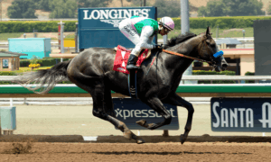 arrogate Benoit Photo