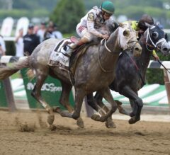 Belmont Stakes Trip Notes and Analysis
