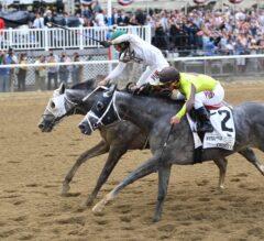 Belmont Park Notes: Saratoga on the Horizon for G1 Belmont Winner Creator