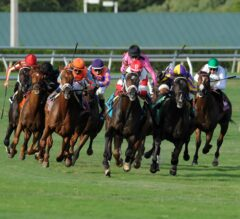 Gulfstream Ready for Saturday's Star-Filled Summit of Speed