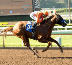 Triple Bend Preview: Lord Nelson Comes in off Sharp Workout