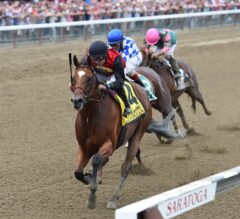 Forego Stakes Preview: A.P. Indian Looks to Continue Winning Streak