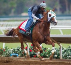 Del Mar Stable Notes: Wait Is Almost Over for California Chrome
