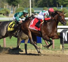 Travers Stakes Preview: Brown's Trio Looks to Connect in Travers